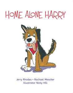 Home Alone Harry Cover